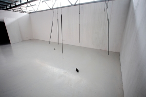 The Grey Book, 2009. Installation view. Wood, steel, concrete, floor paint. Dimensions variable. (Photo: Peter Whyte)